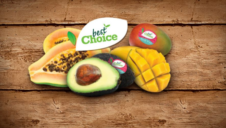 Worldwide importer of exotic fruit and vegetables - Special