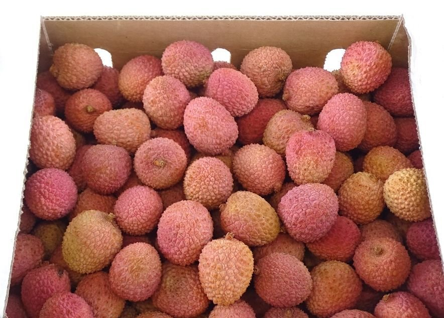 Lychee - Assortment - Special Fruit