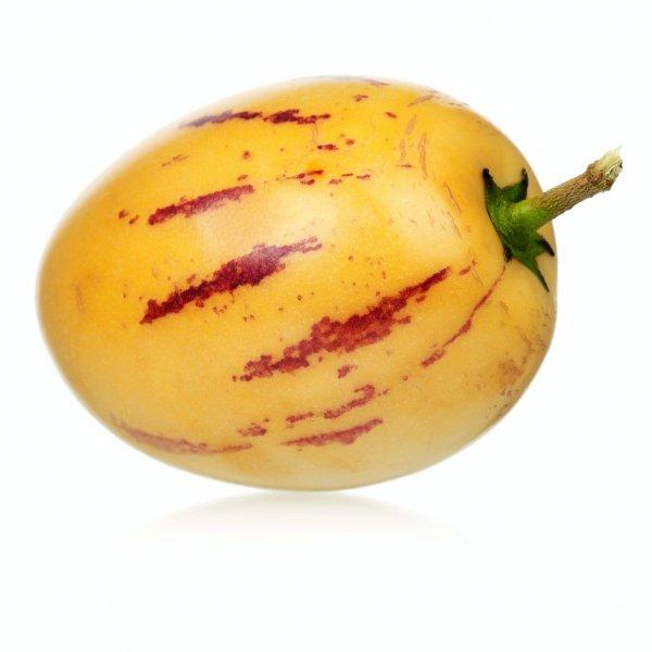 Pepino