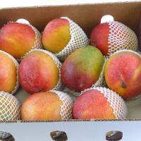Mango by Air - KentPeru&lb;