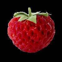 Frambuesa-fresas