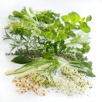 Herbes et cresses