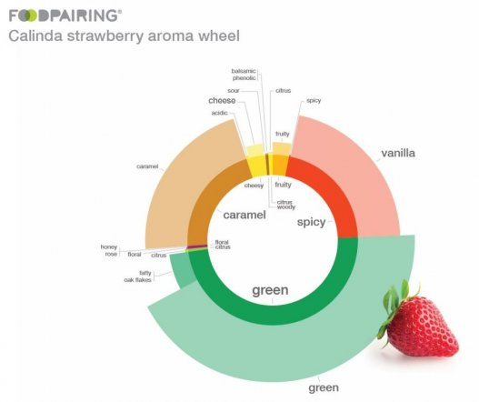 Calinda aroma wheel