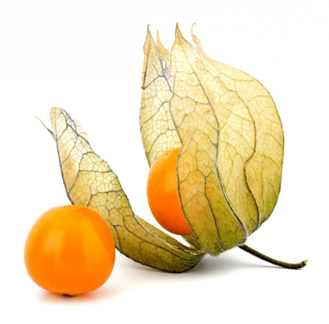 Top Physalis - Assortiment - Special Fruit @VP_44