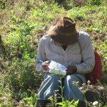 Farmerwritinginthefield