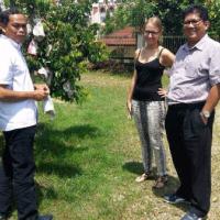 Carambola Malaysia &lb;