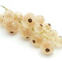 Witte bessen
